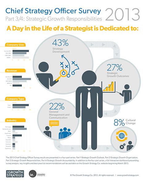 Chief Strategy Officer by Chief Strategy Officer Survey Infographic Series On Behance