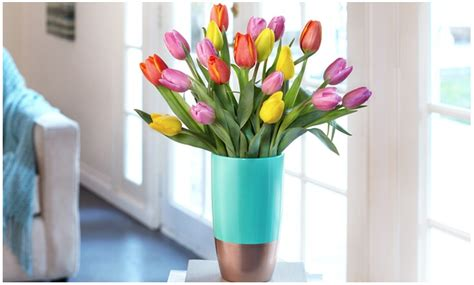 Proflowers Gift Card - groupon extra 20 off local deals or 10 off goods getaways proflowers 40 gift