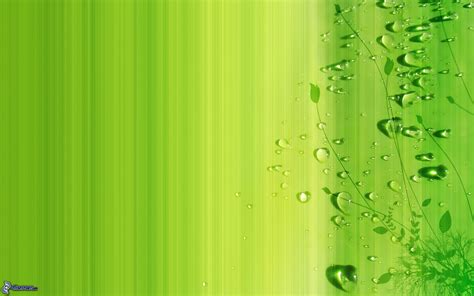 imagenes para fondo de pantalla color verde fondos verde agua imagui