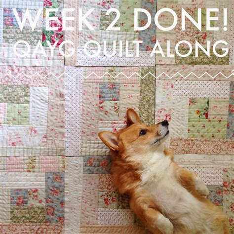 QAYG Quilt Along ? End of Week 2   Quilting in the Rain