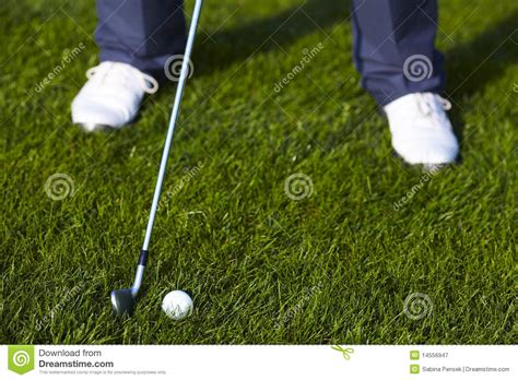 golf swing ball position golf ball position before the swing stock image image of