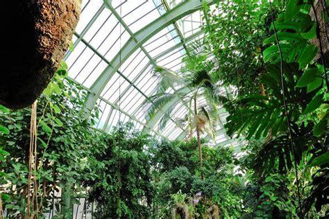 grandes serres du jardin des plantes mus 233 um national d - Serre Jardin Des Plantes