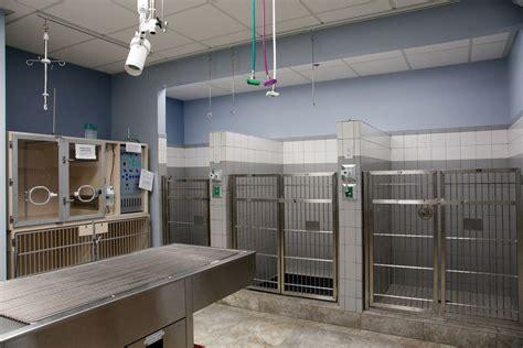 emergency vet bda architecture veterinary hospitals emergency critical care