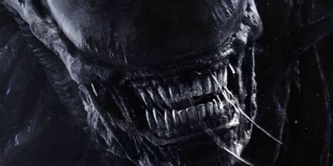 Home Design Game Youtube by The Majesty And Horror Of Alien Covenant Comingsoon Net