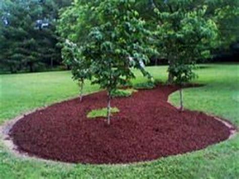 pacciamatura giardino pacciamatura dell orto e giardino avr 242 cura di te