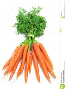 carrots stock photo image 29473680