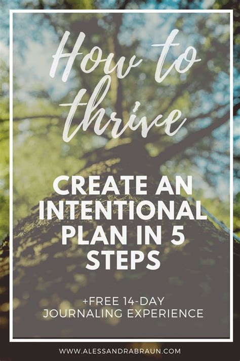 consume to survive create to thrive how creation leads to happiness satisfaction and fulfillment books how to thrive create an intentional plan in 5 steps