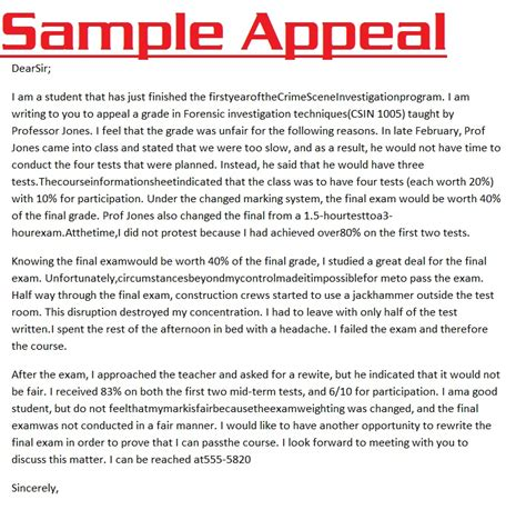 Appeal Letter To Judge Template Appeal Letter 3000