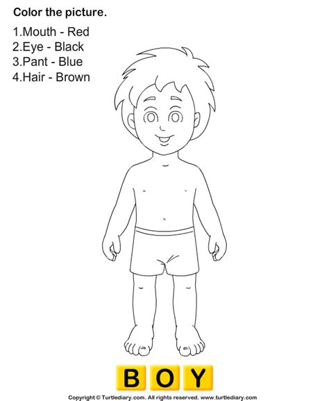 preschool coloring pages human body color the human body turtlediary com