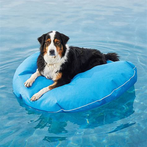 pool rafts for dogs pool lounger frontgate