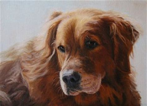 sally s golden retrievers 39 best images about golden retriever paintings and prints on limited