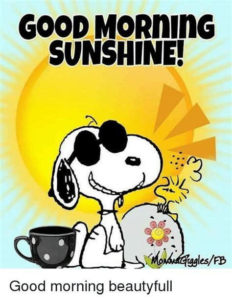 Good Morning Sunshine Meme - 25 best memes about good morning sunshine good morning