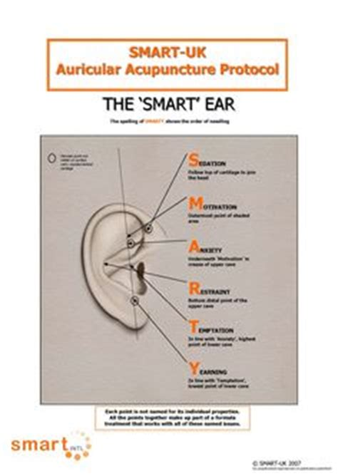 Pressure Points For Detox by Ear Acupressure Points Ear Acupuncture Points Plus