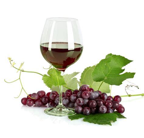imagenes de uvas y copas banco de im 193 genes copa de vino tinto con un racimo de