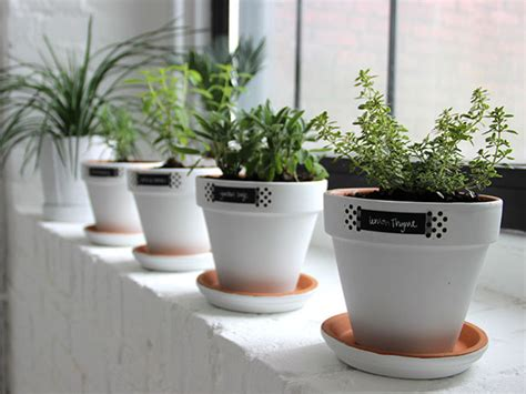windowsill planter indoor modern white minimalist easy windowsill herb garden