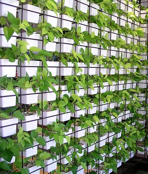 plant partition use your green wall as a partition see more at www