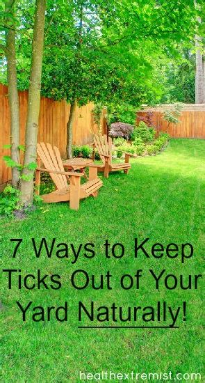 how to keep in yard 7 ways to keep ticks out of your yard naturally health extremist