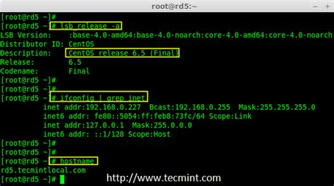 tutorial raid linux check software raid on centos commands sokolspanish