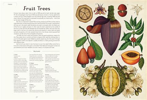 libro botanicum botanicum il nuovo libro di katie scott 232 dedicato alle piante frizzifrizzi