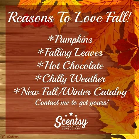 fall scents 17 best images about scentsy on diffusers