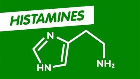Antihistamine Also Search For Antihistamines Zyrtec Australia
