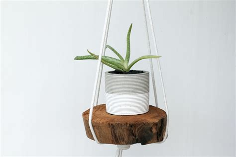 Diy Rope Hanging Planter - diy rope hanging planter dossier