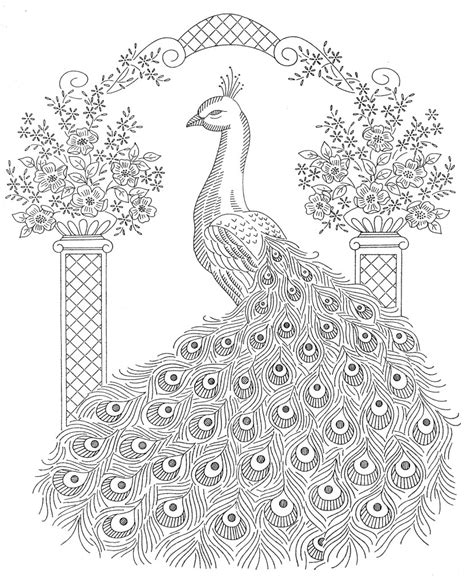 hard feathers coloring design peacock coloring pages coloring skylinepedicab