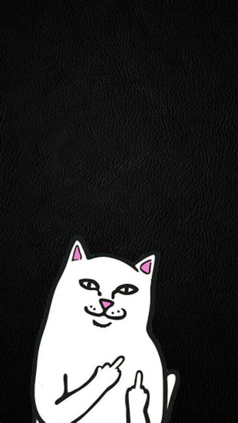 ripndip wallpaper cat 35 best mis wallpapers chidos images on pinterest
