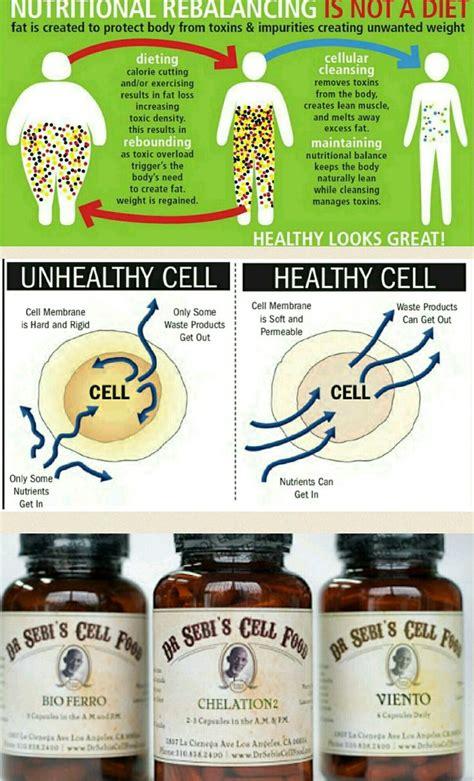 Dr Pas Cellular Detox by 17 Best Ideas About Dr Sebi Cleanse On Dr Sebi