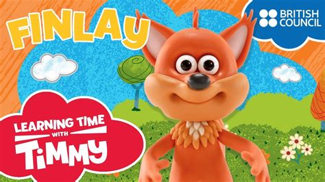 meet finlay learning time  timmy learn animal