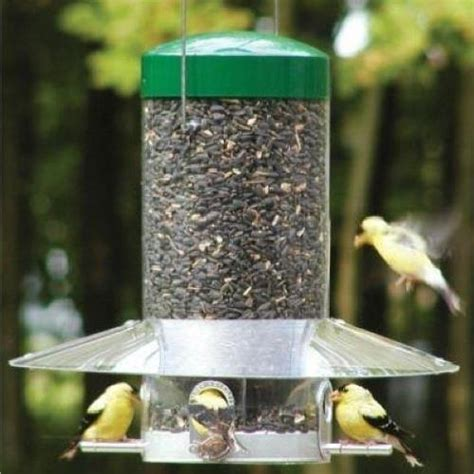 birds choice squirrel proof bird feeder hanging 12