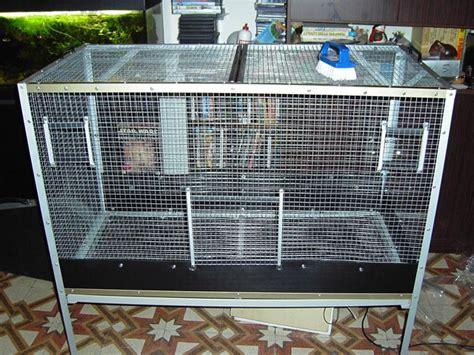 costruire gabbia costruzione voliera