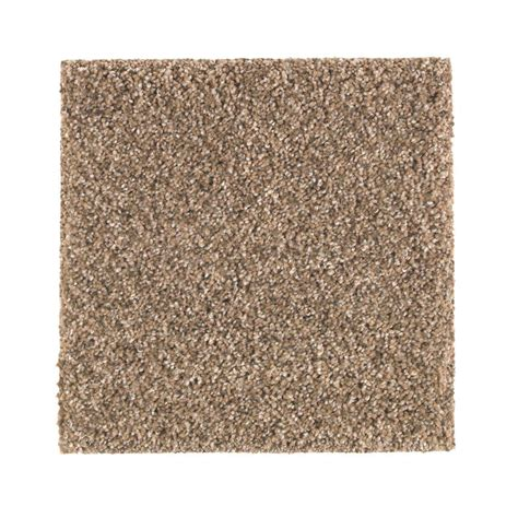 pet proof carpet petproof carpet sle maisie ii color foundation texture 8 in x 8 in mo 387288 the home