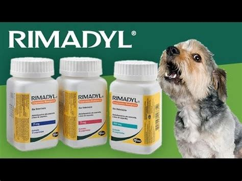 rimadyl for dogs rimadyl dosage for dogs