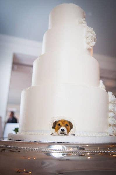 Wedding Cakes Charlottesville Va by Maliha Creations Charlottesville Va Wedding Cake