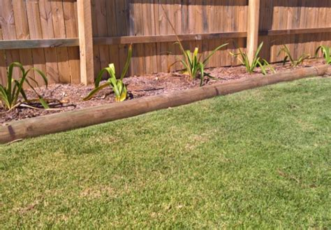top 28 when do i stop watering my lawn how to get rid of moles in your yard if i can do it