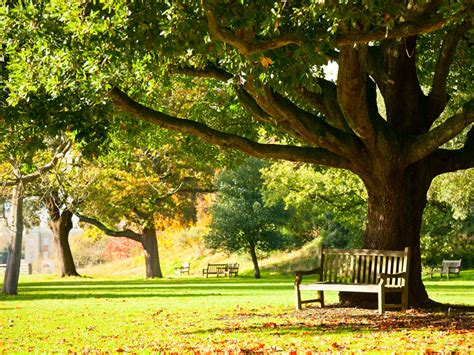 Royal Botanic Gardens Of Kew 22 Of The World S Most Magnificent Gardens Tripstodiscover