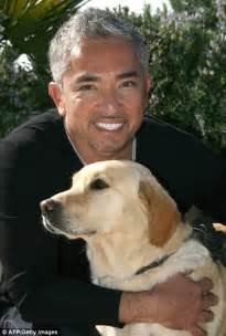 cesar millan puppy whisperer cesar millan obama s pooch bo is real white house leader daily mail