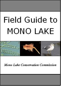 unf ckology a field guide to living with guts and confidence books cover of mono lake field guide