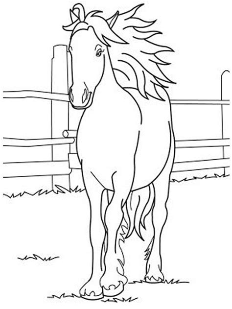 coloring pages of cute horses fun horse coloring pages for your kids printable