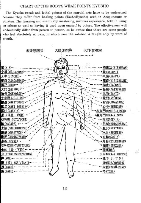 pressure point diagram martial arts chart for quality free