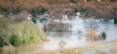 thames river asset management gbv carries out river thames scheme appraisal wwt
