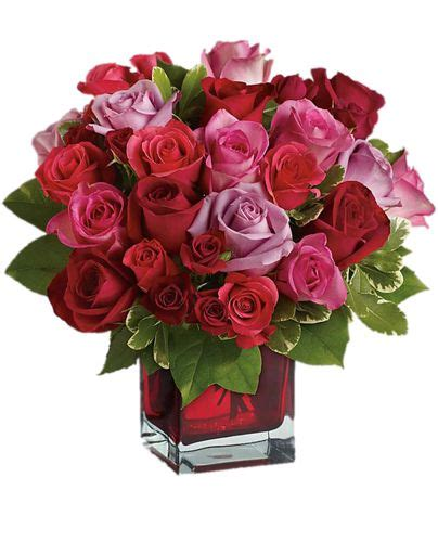 Wishes Florist Ck 5 Buket Bunga 77 best images about roses and flowers on
