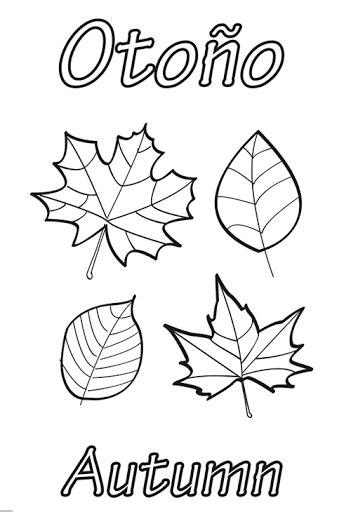 hojas de otono coloring pages el oto 241 o la eduteca 193 lbumes web de picasa oto 241 o