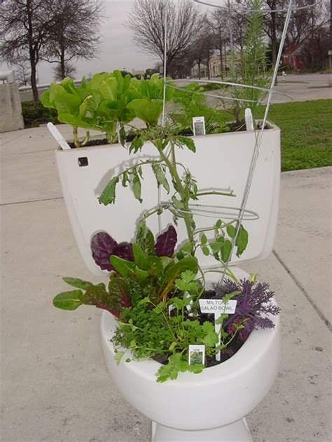 Potty Planters by Toilets And Planters On