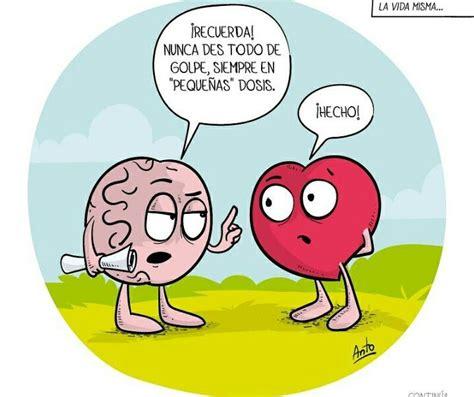 el cerebro idiota el coraz 243 n es un adorable idiota corazon y cerebro idiota el corazon y