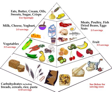 carbohydrates uk daily nutitional requirements food pyramid guide to