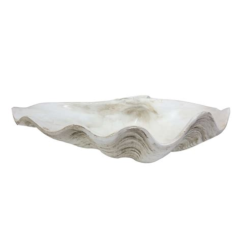 decorative shell bowls dorma decorative shell bowl dunelm wedding theme