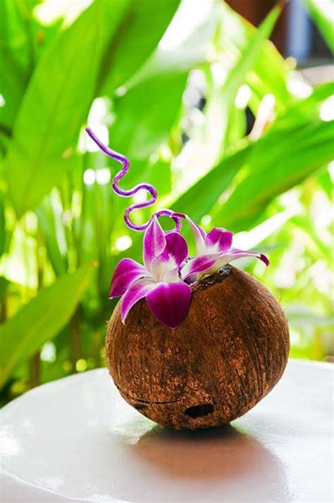 Coconut Perisa 1 Ons flower power up your wedding d 233 cor with orchids