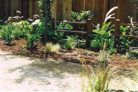 dog friendly backyard landscaping dog friendly garden traditional landscape san francisco by deanna glory
